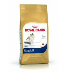 rc-cat-adult-ragdoll-2kg